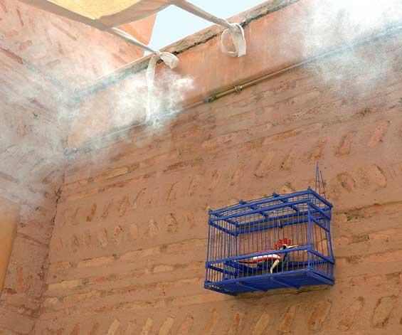 Dar Housnia riad en exclusivité à Marrakech